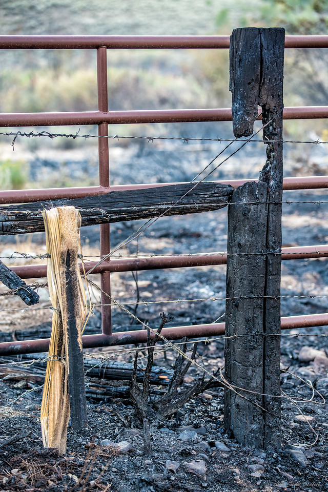 No fencing in this fire.