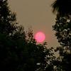 Sunset and smoke-4