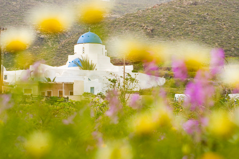 Chapel through Flowers<br /> Santorini, Greece (Thanks Bryan)<br /> April 2006<br /> © WEOttinger, The Wildflower Hunter - All rights reserved<br /> For educational use only - this image, or derivative works, can not be used, published, distributed or sold without written permission of the owner.