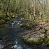 Little Stony Creek.<br /> April 20, 2017