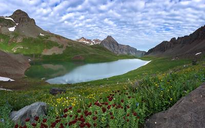 Upper Blue Lake - Flower Show