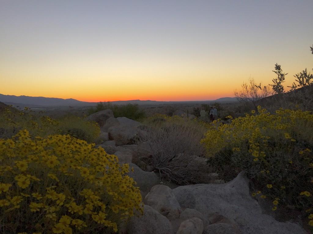 . Sun rising over the ridge at Borrego Palm Canyon, Anza-Borrego Desert State Park