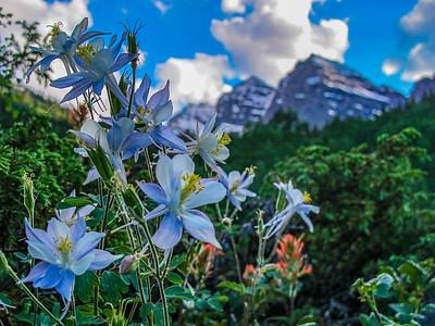 Bells in the Sky, Maroon Bells Wilderness, CO