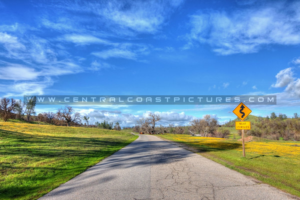 shell creek road_6574