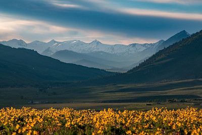Snowy Peaks to Sunflowers. Crested Butte, CO