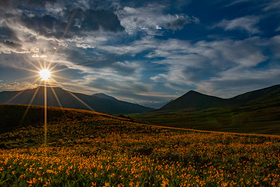 Field of Dreams, Crested Butte, CO