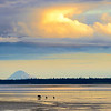 A bear and her two cubs walk accross the beach at sunset.  Silver Salmon Creek, Alaska
