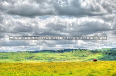 Hwy-41-clouds-wildflowers_0038