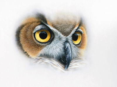 Sage -- Great Horned Owl Watercolor and Gouache on Illustration board SOLD