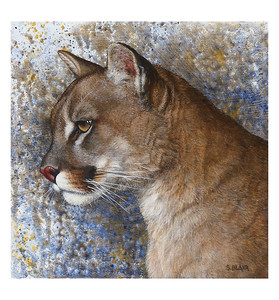 Intensity -- Cougar