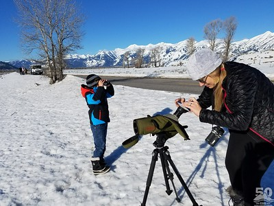 Sarah Ernst -Moosewatching on a Beautiful Day