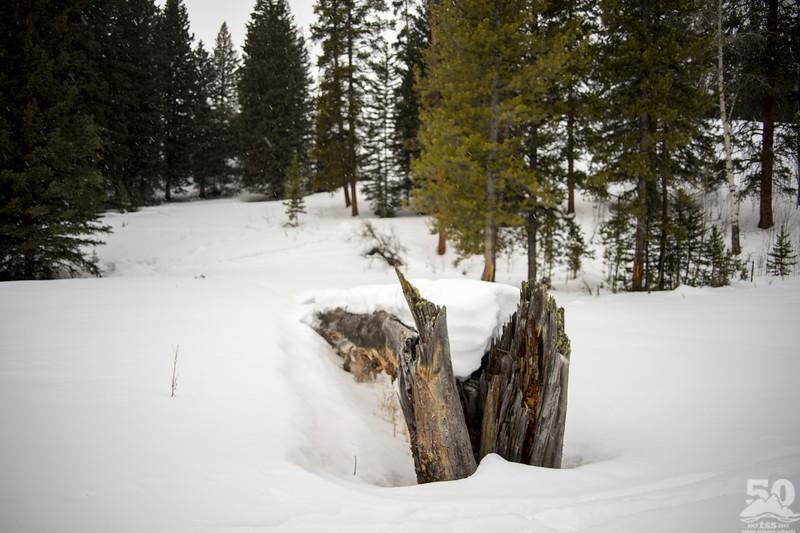 Dylan Klinesteker - Heavy Snow