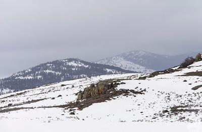 Dylan Klinesteker - Wolf On A Ridge