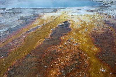 Dylan Klinesteker- Natural Art