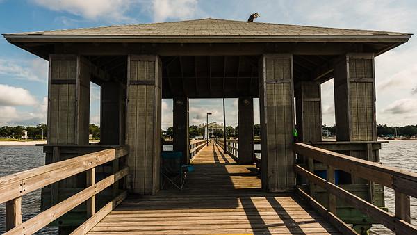 The Heron of Biloxi