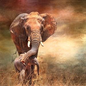 Elephant Mom and Baby Digital Art