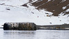 Coming down from the top at Brown Bluff, Antarctica, a tuya located at the northern tip of the Antarctic Peninsula.