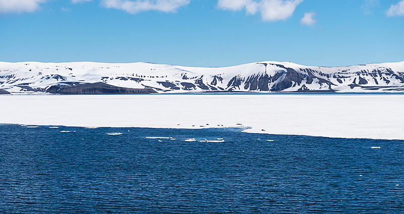Port Foster, a harbor in the center of Deception Island, created from a volcanic calder, flooded by the sea, the entrance of which is Neptune's Bellows, a channel on the southeast side of Deception Island, with Mount Uritorco ahead, and the remains of a winter ice shelf blocking access to Telefone Bay. There are eight Crabeater Seals resting on the ice shelf.