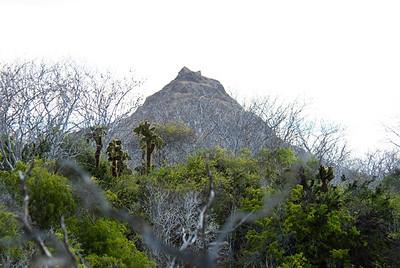 Galapagos Trip - Galapagos, Cerro Dragon, Santa Cruz Island