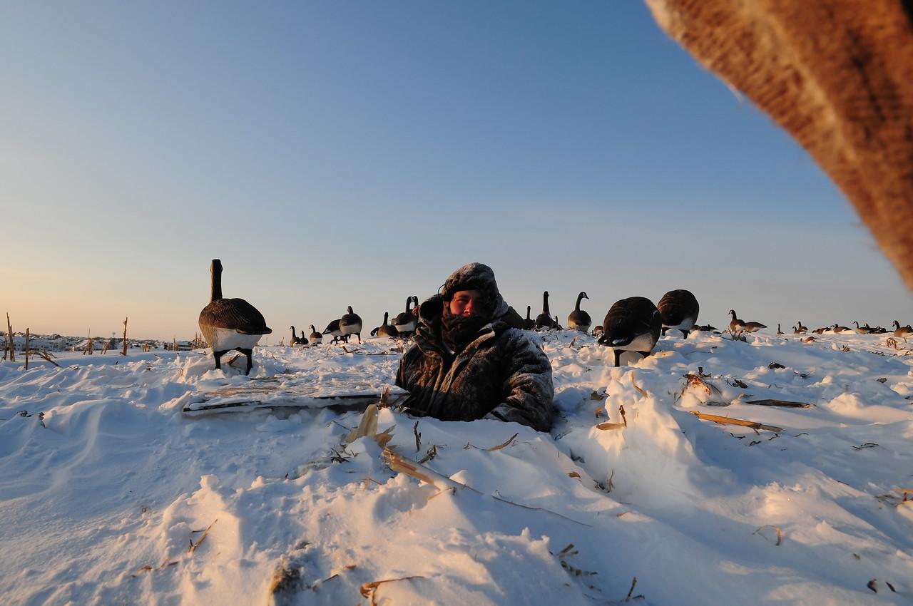 Goose Hunting late seasonBKJ_5035