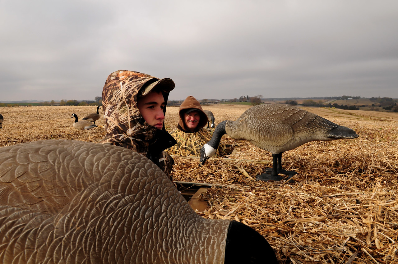 Goose hunting Father son GOS_8788