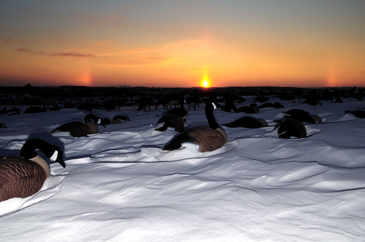 goose hunting sunset BKJ_5138