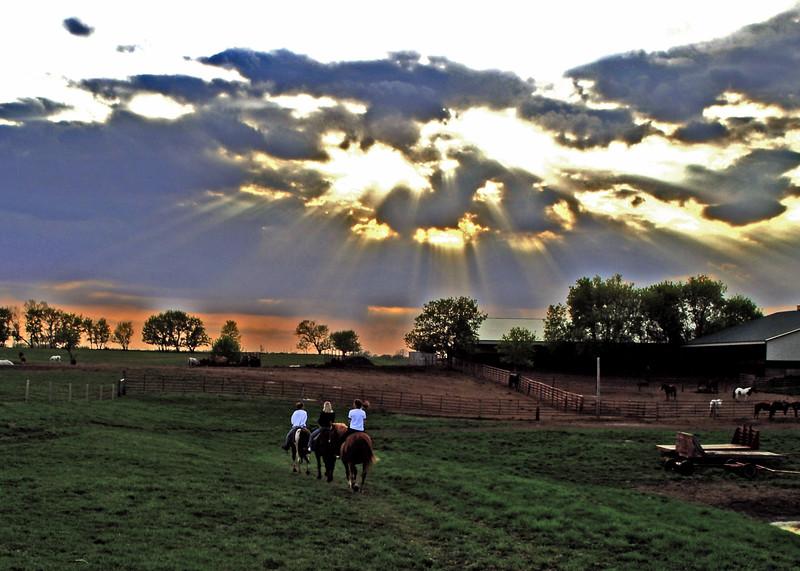 Horse-Sunset-enhanced-MWL_3