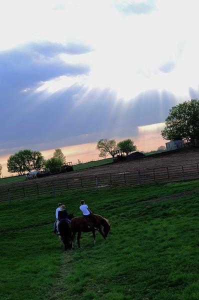 Horse-Sunset-MWL_3670
