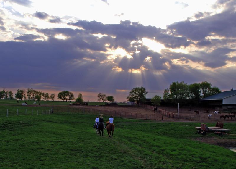 Sunset-Horse-MWL_3667