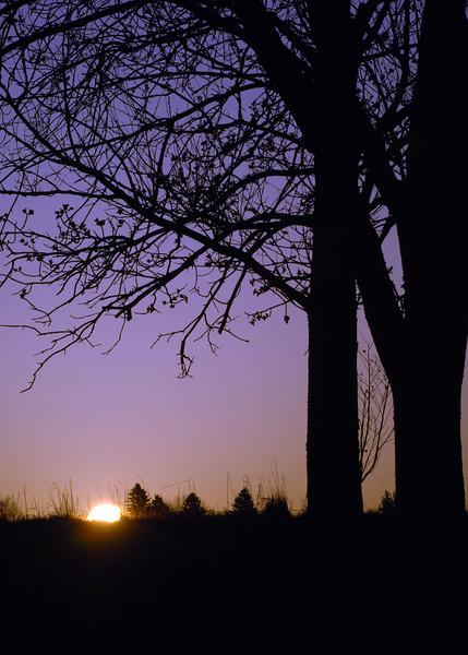Sunrise-WID_1385