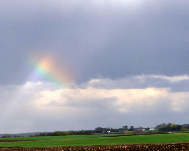rainbow-WID_1516