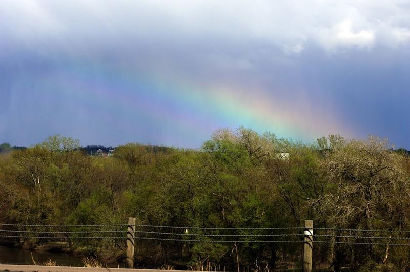 Rainbow WID_1485
