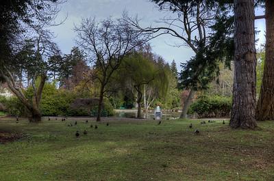 Beacon Hill Park - Victoria, Vancouver Island, British Columbia, Canada