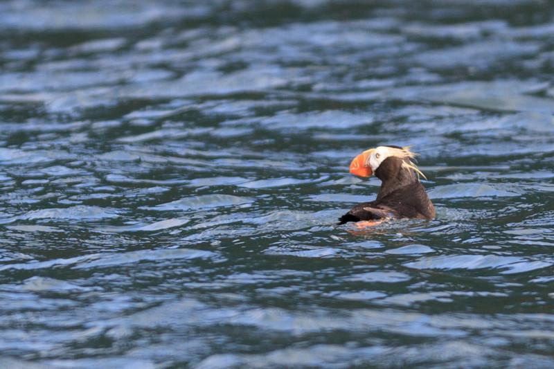 2011_09_23 Alaska 096