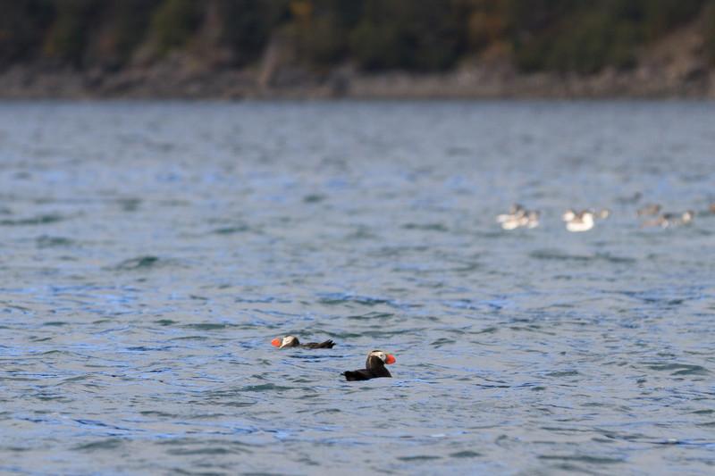 2011_09_23 Alaska 091