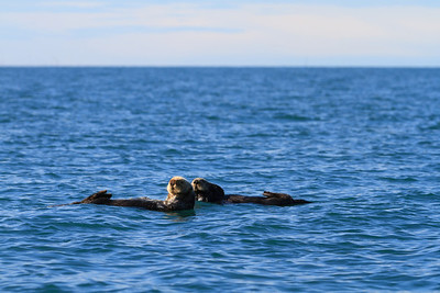 2011_09_23 Alaska 080