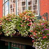 Irish Window Baskets