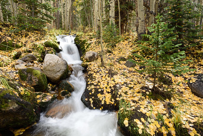 Boulder Brook Autumn