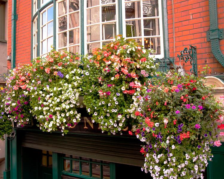 Irish Window Baskets