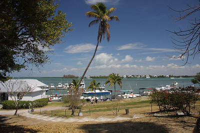 Took a boat ride to Cabbage Key for lunch. Cabbage Key is a small island about 15-20 miles NW of Ft Myers.