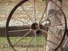 Bird In Wagon Wheel 65