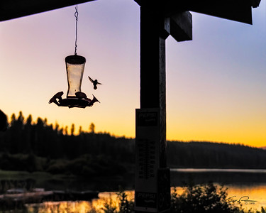 Clear Lake Hummer
