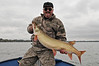 """45"""" musky caught October 17, 2009.  Fish was released."""