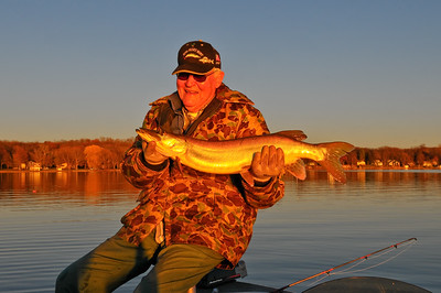 "33"" musky caught November 10, 2009."