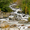 050913_Hyder, Fish Creek, Salmon Glacier_012