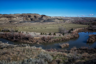 Walla Walla River Cattle Ranch