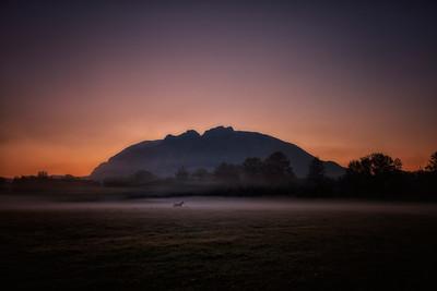 Mount Si Pasture Horse Sunrise 9-5-18