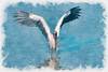 Wood Stork landing - Paintograohy