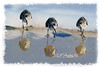 """Three sandpipers feeding<br /> <br /> to purchase - <a href=""""http://dan-friend.artistwebsites.com/featured/three-sandpipers-feeding-dan-friend.html"""">http://dan-friend.artistwebsites.com/featured/three-sandpipers-feeding-dan-friend.html</a>           .................................................................pixel paintography"""