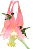 Ruby-throated Hummingbirds paintography with wild flower